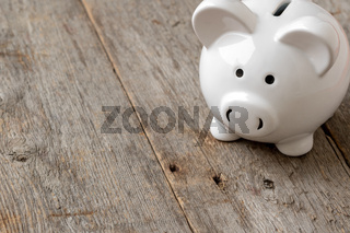 Finance concept with white piggy-bank