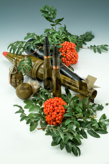 Ashberry And Grenades