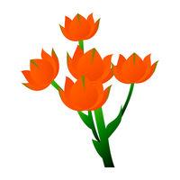 Vector illustration of star of bethlehem orange flower with green leafs on white background.