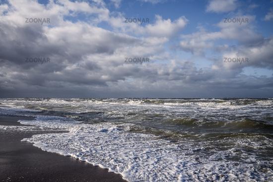 Baltic sea - Darsser west beach
