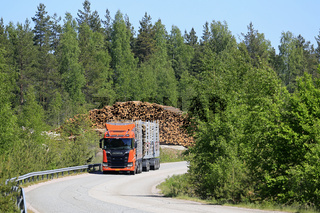 New Scania R650 Logging Truck on Forest Road