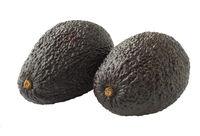 Avocado isolated on white background, closeup of avocados.