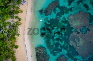bird view shot of tropical beach El Portillo