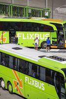 Two Flixbusses