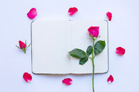 Diary notebook with rose on white  background. Top view