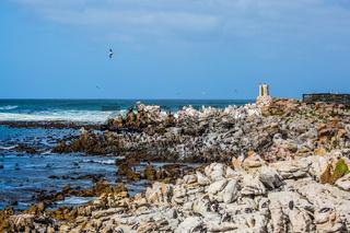 African coast of Atlantic