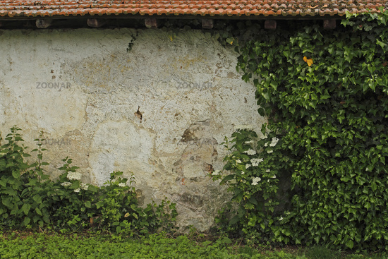 Wall of an old farmhouse