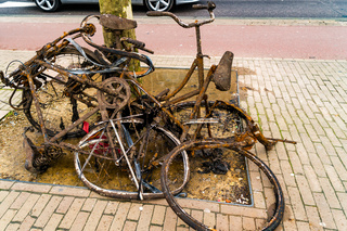 Old rusty abandoned bikes