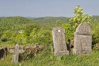Tombstones in the wilderness of Istria