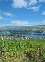 Wine Village of Ruedesheim am Rhein,Rheingau,Hesse,Germany