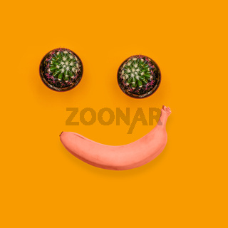 Two green cactus and red banana. Smiling, joyful face. Contemporary art collage. Fruits and plants.