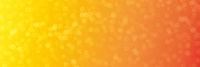 Sommer Abend Licht als Bokeh Hintergrund Banner