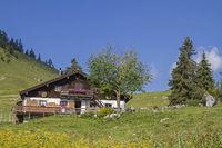 Grabenbergalm im Mangfallgebirge