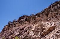 desert in Chile