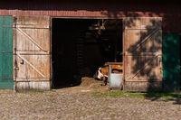 Cattle in a barn