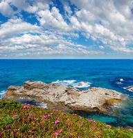 Atlantic blossoming coastline (Spain).