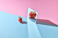 A ripe tomato is reflected in a mirror on a double pink-blue cardboard background with space for text.