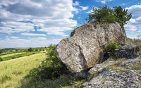 giant boulder with cherrytree in Burgenland Austria