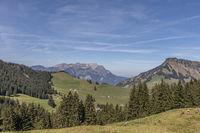 View of the Stanserhorn, Gummenalp, Nidwalden, Switzerland, Europe