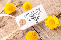 White Label, Dandelion, Calligraphy Thank You, Wooden Background