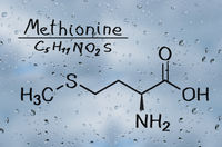 Structural model of Methionine