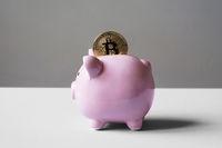 piggy bank or money box with bitcoin coin
