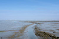 Tidal Channel in Wattenmeer National Park called Priel,North Sea,Germany