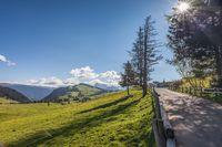 Hiking trail on the Alpe di Siusi