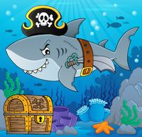 Pirate shark topic image 5