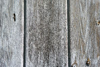 grunge texture of old weathered wood