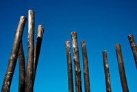 group of wooden poles