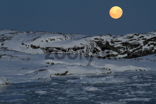 large bright moon over the Antarctic islands covered with snow on a winter night