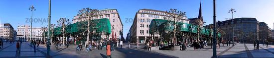 Town Hall Plat Hamburg Panorama