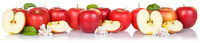 Red apple fruits apples fruit isolated on white in a row