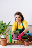 Female gardener with plants indoors