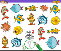 find two same fish characters game for kids