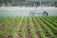 Irrigation equipment on farm field on sunny day