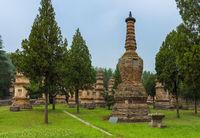 Pagoda Forest at Shaolin Buddhist monastery - China
