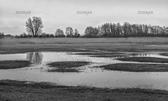 Landscape at the Buger Bodden