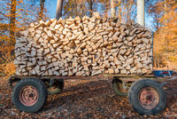 trailer with fire wood