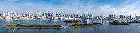 Tokyo Tower Rainbow bridge panorama