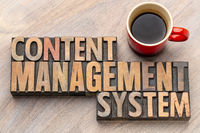 content management system - word asbtract in wood type