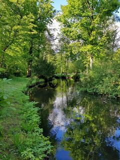 Die Panke im Schlosspark in Berlin-Pankow