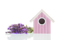 Bouquet Lavender with bird house on white background
