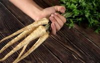 Hand holding bunch of fresh parsnip roots with green leaves over dark wooden board