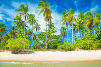Beautiful beach at tropical island with palm trees