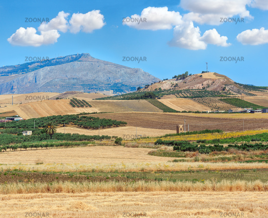 Sicily summer agriculture countryside, Italy