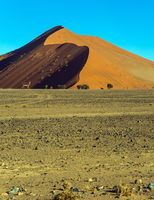 The Namib desert