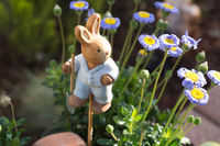 Small wooden bunny in a flowerpot