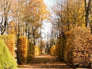Herbst in einem Barockgarten